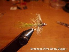 beadhead olivr woolybugger.jpg