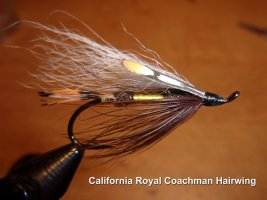 California Royal Coachman Hairwing  .jpg