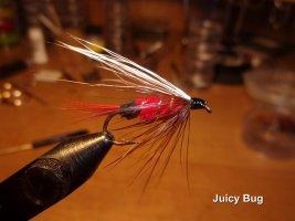 Juicy Bug .jpg