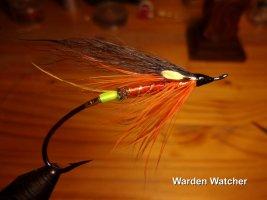 Warden Watcher .jpg