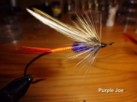 Purple Joe .jpg