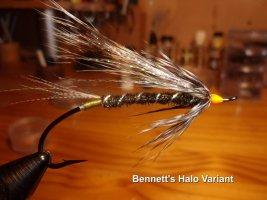 Bennett's Halo Variant .jpg