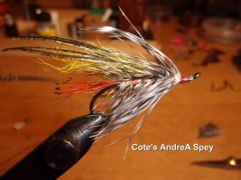 Cote's AndreA Spey.jpg